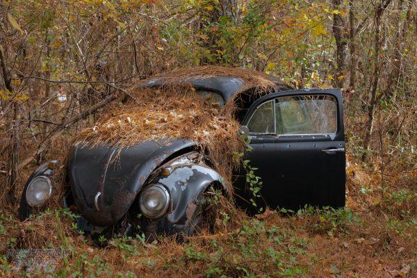 Junk Yards That Buy Junk Cars